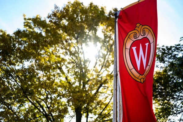 Red banner with the Crest on it and a sun-speckled tree on Bascom Hill